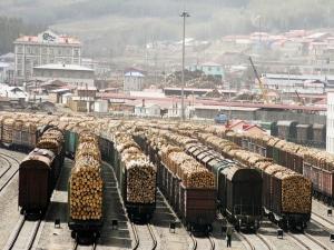 Экспорт фанерного кряжа из России в Китай разоряет предприятия